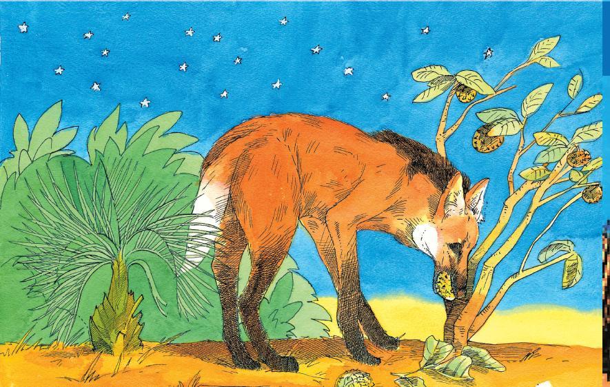 lobo tipo especie: